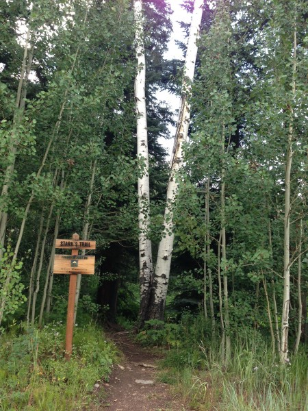 Stark Trail Snowmass, CO
