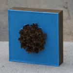 Lisa Marie Sipe blue encaustic and mini pine cones on panel