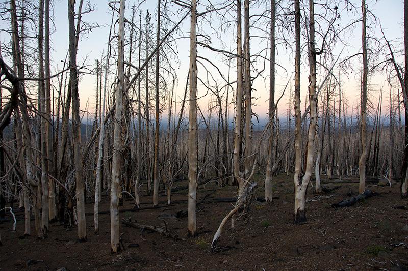 Pole Creek Fire, Sisters, Oregon